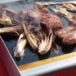 Barbecue Elettrico Planet VETROCERAMICA EL.PRO